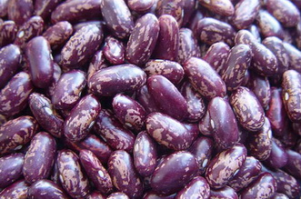 Chinese Purple Speckled Kidney Beans